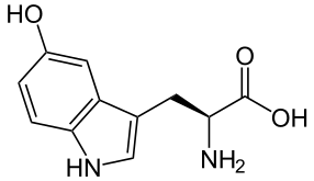 5-Hydroxytryptophan-Molekül
